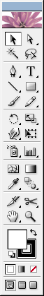 Adobe Illustrator Toolbox