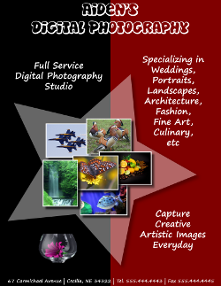Adobe Illustrator Digital Photography Flyer