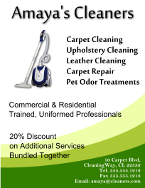 Amaya's Cleaners Flyer Template