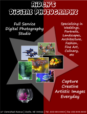 Inkscape Digital Photography Flyer