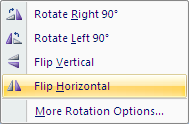 Microsoft Word 2007 Flip Horizontal Icon