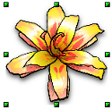 OpenOffice Draw Selected Yellow Flower With Handles